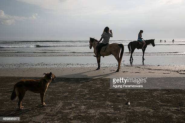 Tourists ride horses at Double Six beach on April 16 2015 in Seminyak Bali Indonesia Indonesia on April 16 banned small retailers from selling beer...