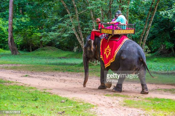 Tourists riding an Elephant at the Angkor Thom in Siem Reap Cambodia