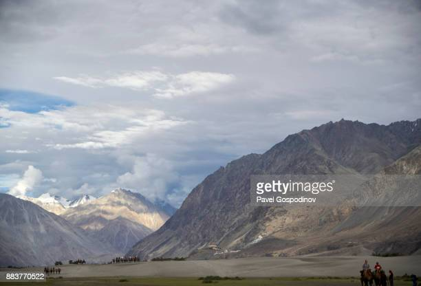 Tourists riding Bactrian camels in Nubra Valley, Ladakh, India