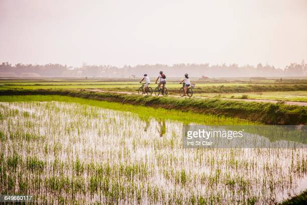 Tourists riding bicycles in rural landscape