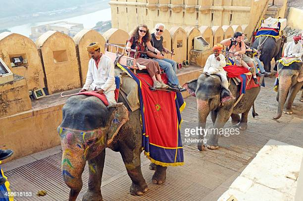 tourists riding elephants, amber fort, jaipur, india - amber fort stock pictures, royalty-free photos & images