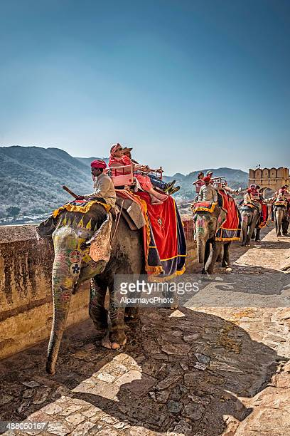 Tourists riding elephants coming toward Amber Fort, Jaipur