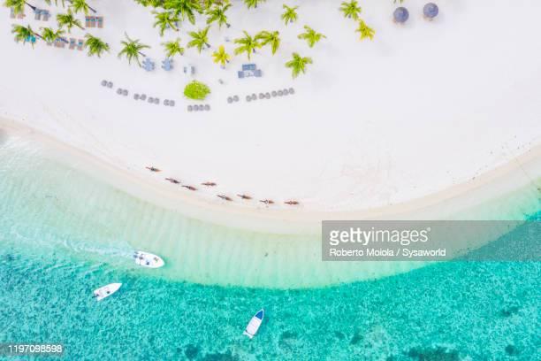 tourists riding horse on tropical beach, aerial view, indian ocean, mauritius - lagon photos et images de collection