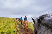 skjaldarvik icelandic horse riding tour near