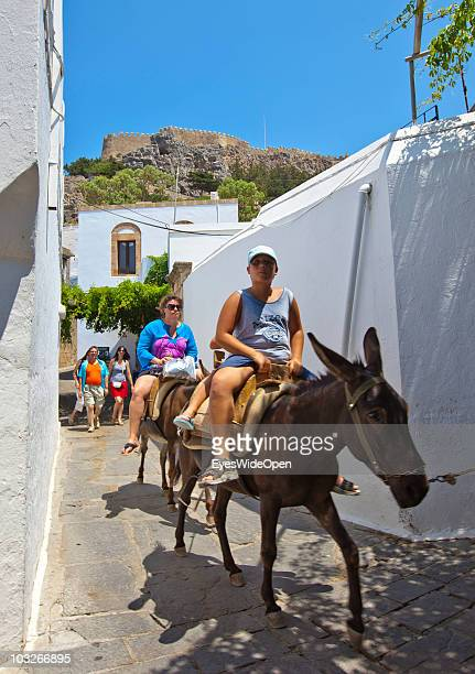 Tourists riding on donkeys up to the Acropolis of Lindos on July 04 2010 in Lindos Greece The old town of Lindos is famous for its class listed...