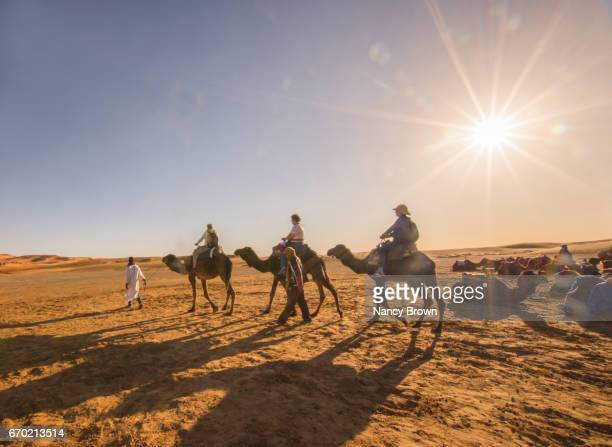 Tourists riding safari camels in the Sahara Desert