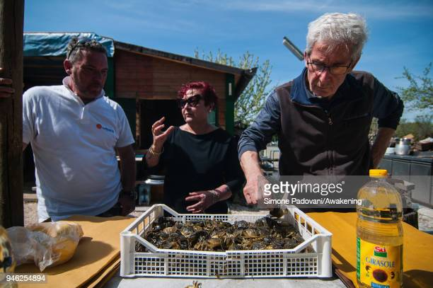 Tourists select 'Moeche' after a fishing tour organized by Cooperativa San Marco in Burano on April 14 2018 in Venice Italy At the beginning of the...