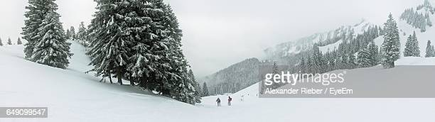 Tourists Skiing At Snow Covered Landscape
