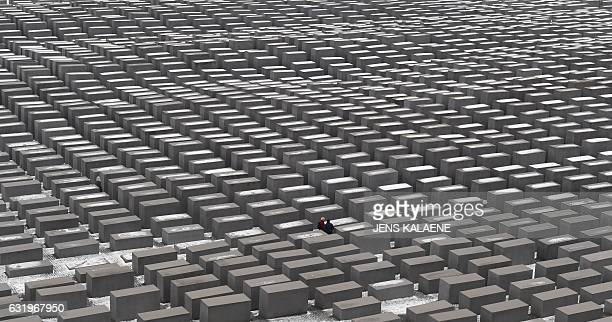 Tourists stand between snowcovered concrete steles of Berlin's Holocaust Memorial on January 18 2017 Bjoern Hoecke a leading member of German...