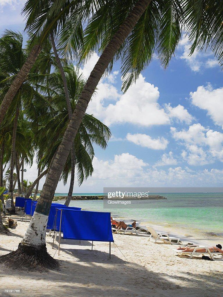 Tourists sunbathing on the beach, Spratt Bight Beach, San Andres, Providencia y Santa Catalina, San Andres y Providencia Department, Colombia : Stock Photo