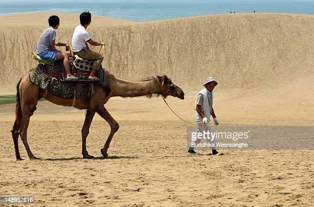 Tourists take a camel ride on Tottori sand dunes on July 21 2012 in Tottori Japan The dunes are over 30 km² but are decreasing in size as a result of...