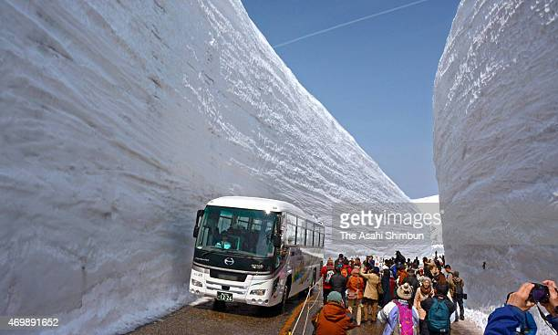 Tourists take photographs of the 19metretall snow walls near Murodo the highest point of the Tateyama Kurobe Apline Route which is fully opens on...