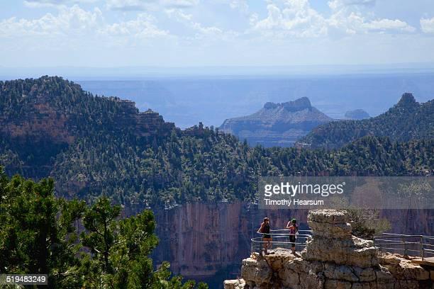 tourists taking photos at grand canyon, north rim - timothy hearsum stockfoto's en -beelden