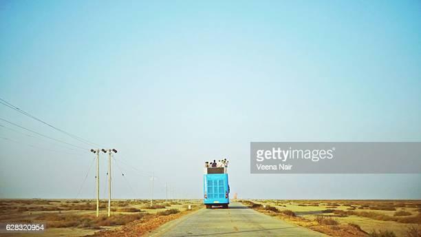 Tourists travelling on a bus-Rann Utsav-Kutch-Gujarat