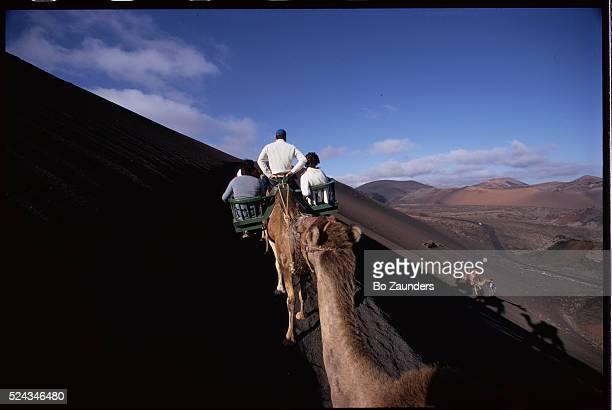 Tourists traverse lofty sand dunes with the help of strong and steady camels on Lanzarote one of Spain's Canary Islands off the coast of Africa