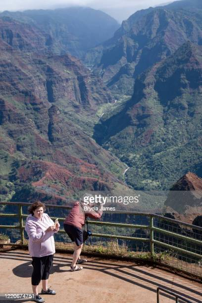 tourists viewing waimea canyon - brycia james stock pictures, royalty-free photos & images