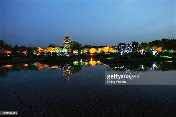 Tourists visit the East Lake Cherry Blossom Garden during its Cherry Blossom Festival on March 23 2008 in a suburb of Wuhan of the Hubei Province...