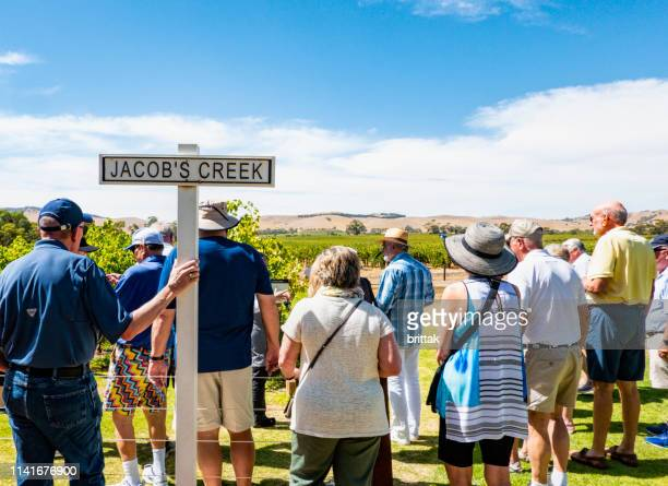 tourists visiting jacobs creek vineyards barossa valley australia. - barossa valley stock pictures, royalty-free photos & images