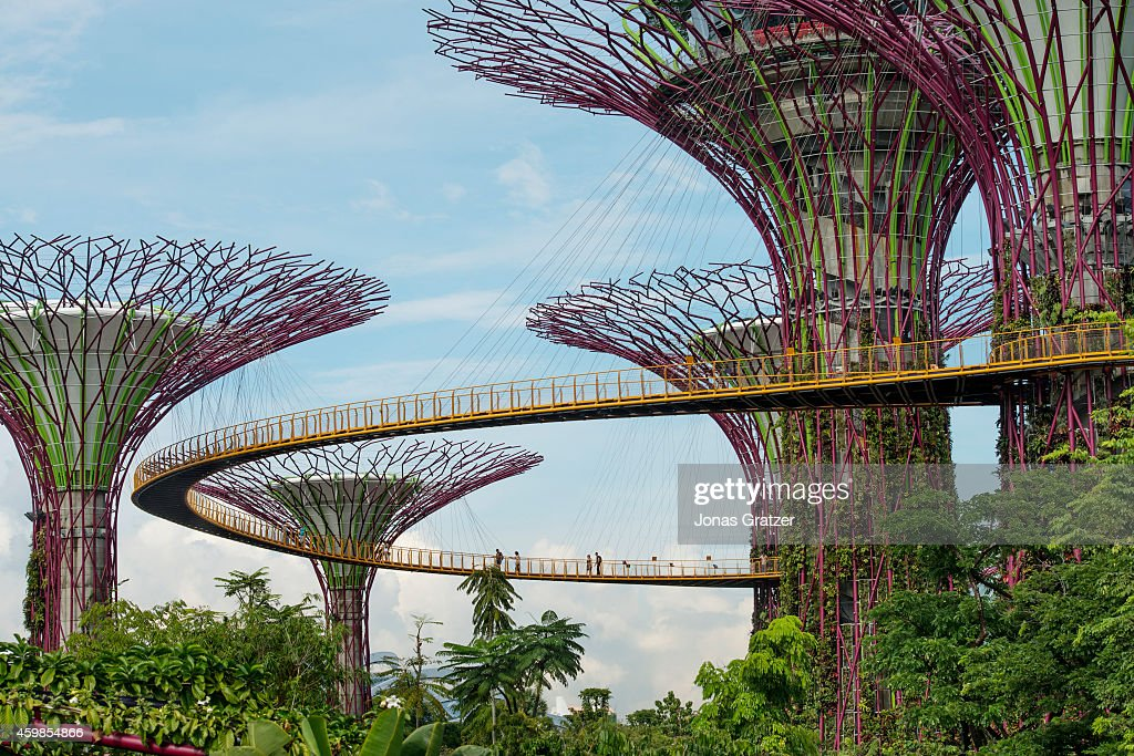Sky Garden Walk: Tourists Walk Around On The Sky-walk Structures At Gardens