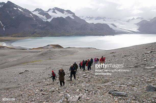 tourists walk from fortuna bay, south georgia, south atlantic - zuid georgia eiland stockfoto's en -beelden