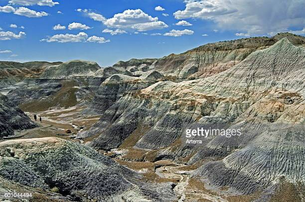 Tourists walking along the Blue Mesa Trail winding through badlands formations coneshape hills composed of soft porous clay that eroded into...