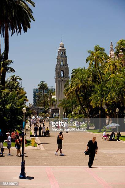 Tourists walking in a park, Balboa Park, San Diego, California, USA