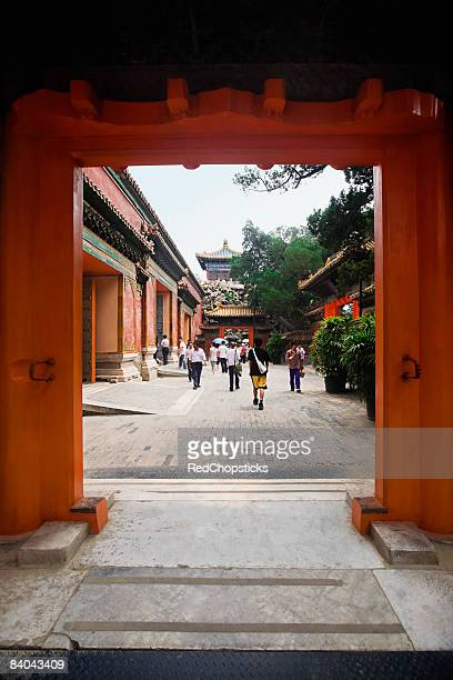 tourists walking in the courtyard of a palace, forbidden city, beijing, china - courtyard stock photos and pictures