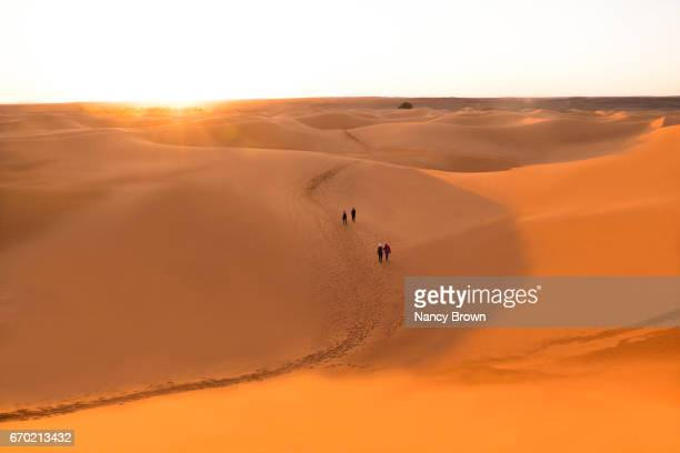 Tourists walking in The Sahara Desert at Sunset in Morocco Africa.