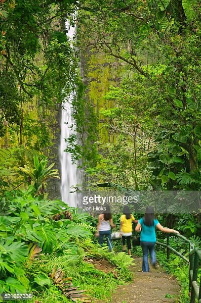 Tourists Walking Towards Akaka Falls