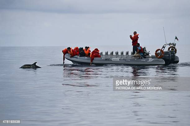 Tourists watch dolphins swim during a whale watching tour on the Atlantic Ocean off the coast of Sao Miguel island in the Azores on June 2 2015 With...