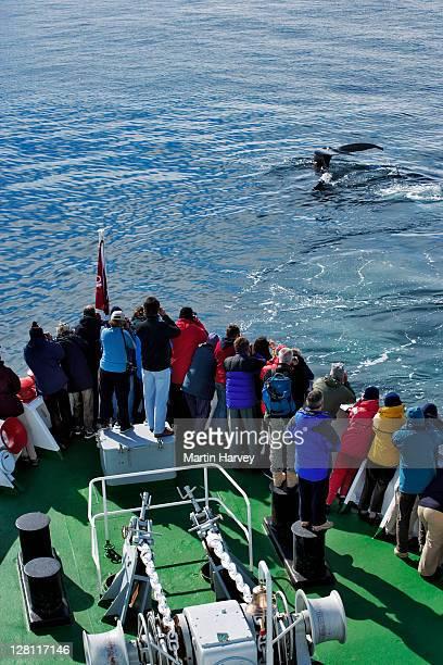 Ocean Explorer, Tazacorte (La Palma) 2021