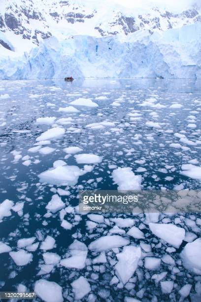 tourists watching large glacier while passing through paradise bay - ice floe stock pictures, royalty-free photos & images