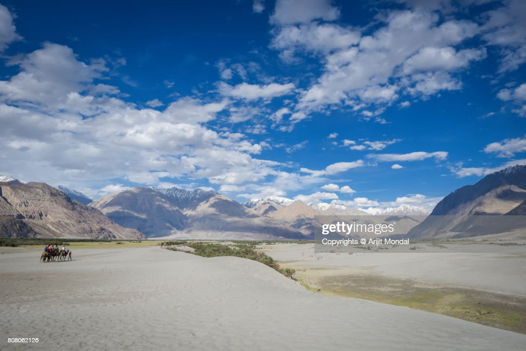 Tourists With Camels At Sand Dunes Of The Cold Desert In Nubra