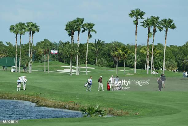 Tournament Scenic