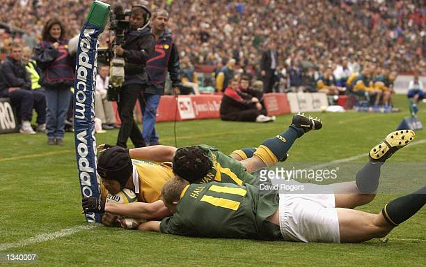 Toutai Kefu of Australia dives over but his try was disallowed by the video referee in the Tri Nations Rugby Union International match between South...