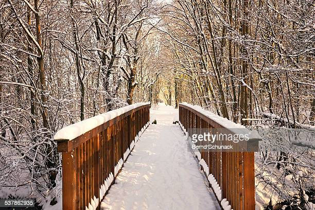towards the winter wonderland - bernd schunack stockfoto's en -beelden