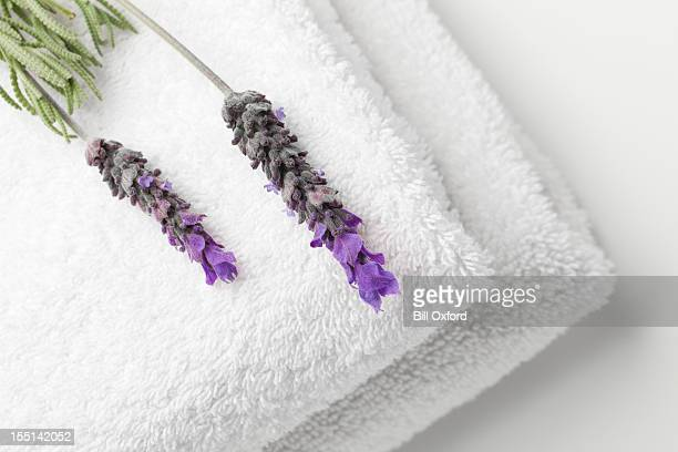 Towels and Lavender