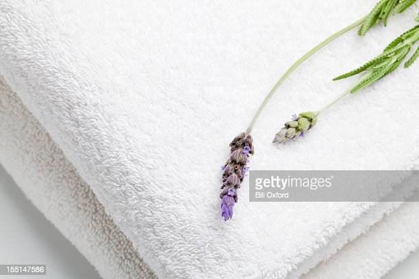 towels and lavender - towel stock pictures, royalty-free photos & images
