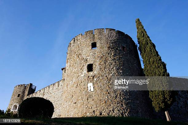 tower and cypress - gorizia stock pictures, royalty-free photos & images
