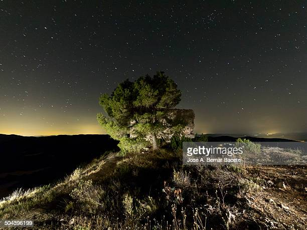 tower of a castle on starry night on the mountain - castle mountain stock photos and pictures