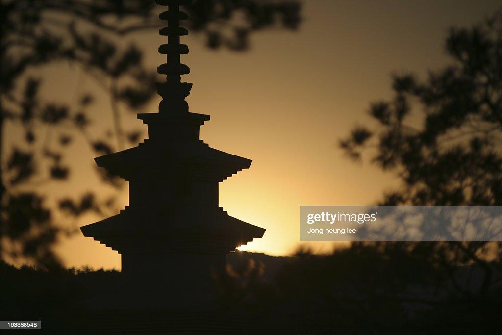 Tower of Korea : Stock Photo