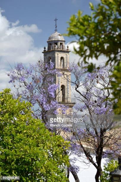 Tower of the Cathedral of Jerez de La Frontera in Cadiz, Spain