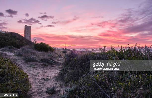 tower of the thieves on sunrise in dunas de artola natural monument, cabopino, andalusia, costa del sol - moruno fotografías e imágenes de stock