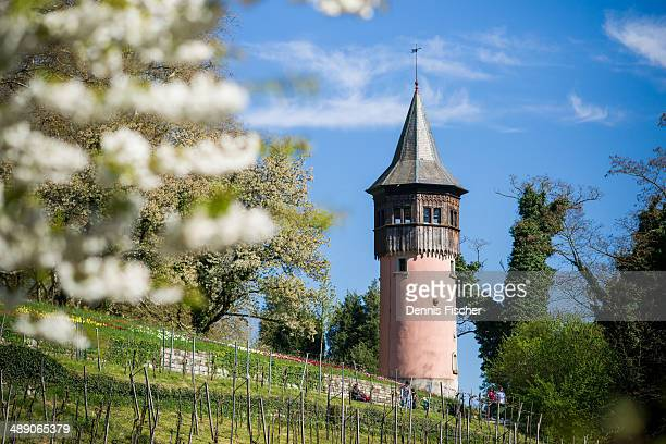 CONTENT] A tower on Mainau garden island Lake Constance