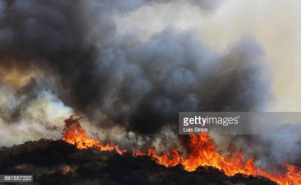 Towering flames of the Blue Cut fire burn out of control in the foothills of the San Bernardino National Forest above Lytle Creek on Wednesday Aug 17...