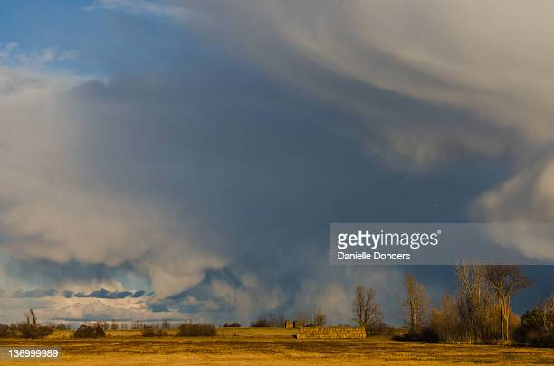 """towering snow clouds on fields - """"danielle donders"""" stock pictures, royalty-free photos & images"""