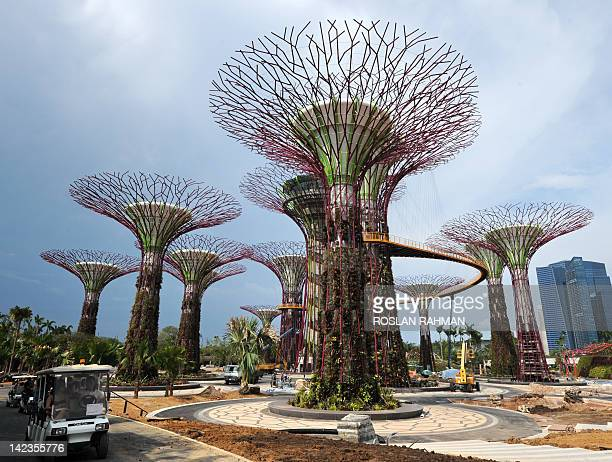 Towering Supertrees Grove which are part of horticultural themed gardens sit in the Garden by the Bay in Singapore on April 3 2012 Situated at the...
