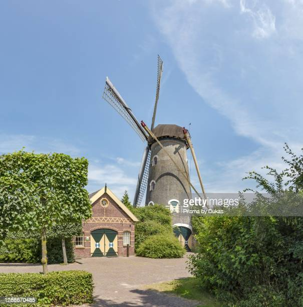 Towermill on a mound called De Coppensmolen, Zeeland, Noord-Brabant, Netherlands.