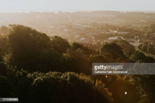 town and treetops bathed in rising sunlight - town stock pictures, royalty-free photos & images