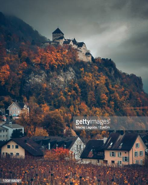 town by tree mountain against sky - vaduz stock pictures, royalty-free photos & images